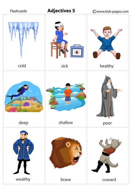 Adjectives 5 Flashcard