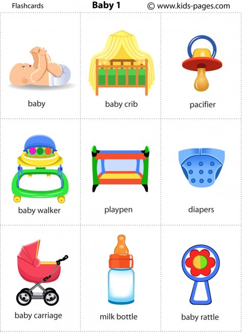 baby 1 flashcard