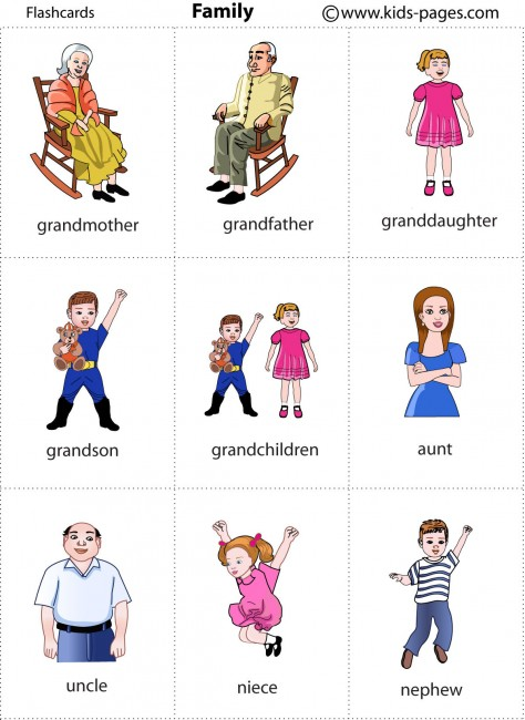 Terms Of Use >> Family 2 flashcard