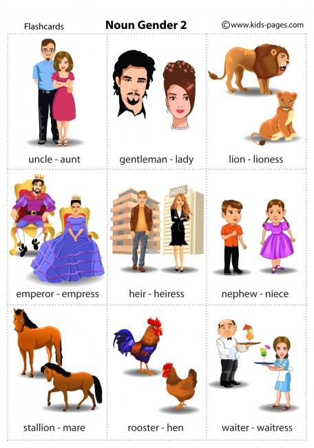 Noun Gender 2 Flashcard