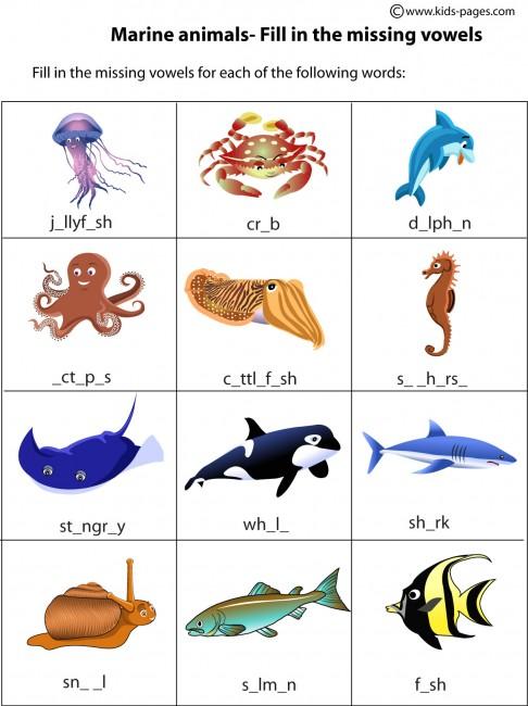 foto de Marine Animals worksheet