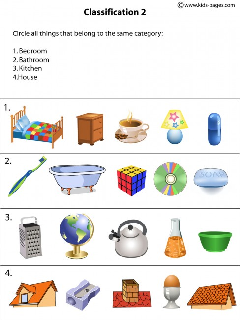 Classification2 worksheet