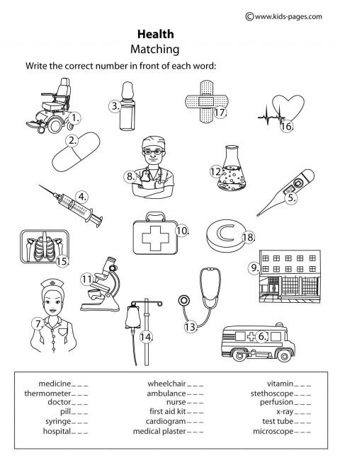 Number Names Worksheets dental health worksheets : Printable Health Worksheets | Imperialdesignstudio